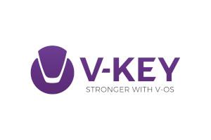 v-key-logo